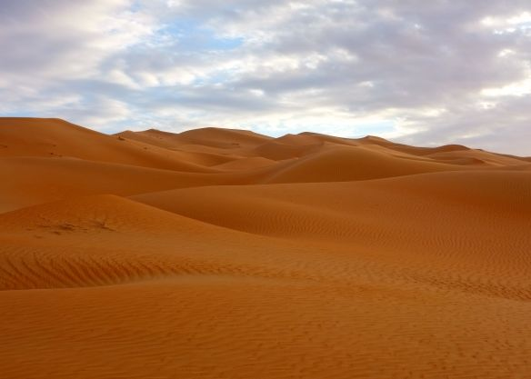 Rub' al Khali (March 2013)