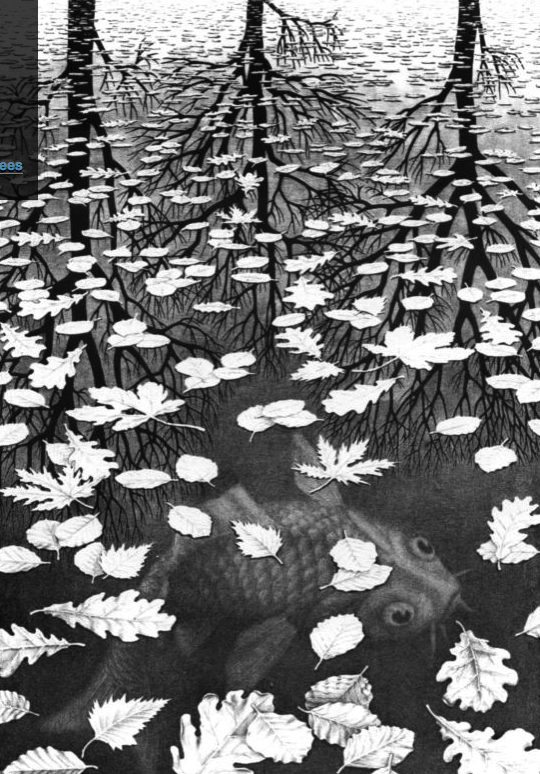 Three Worlds - MC Escher (1955)